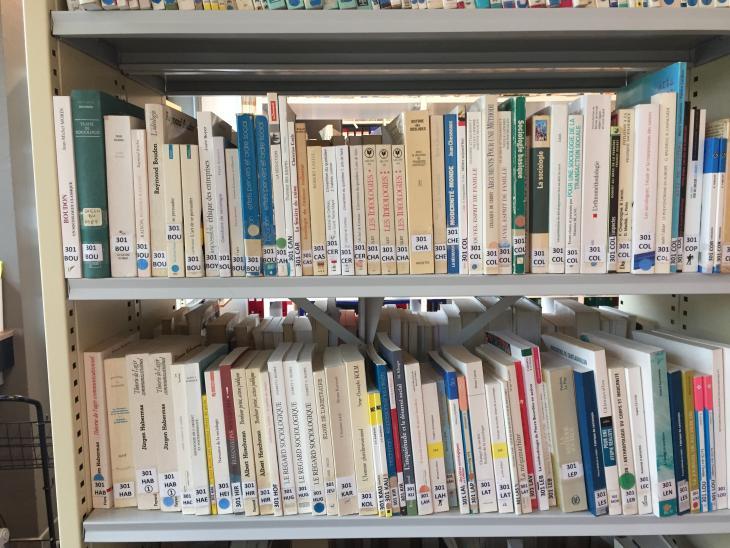 photo rayonnage de livres